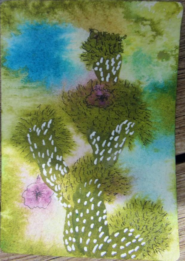 Succulent and Cactus Swap 3