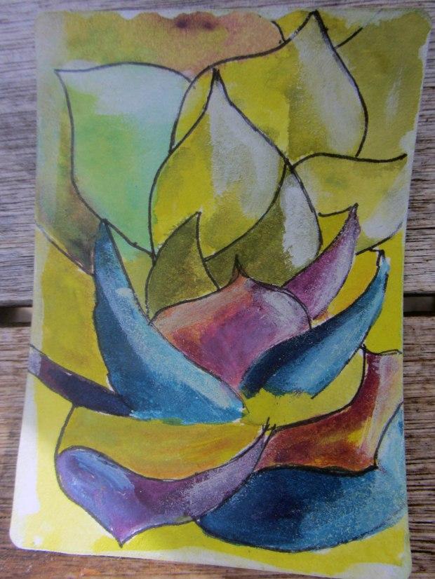 Succulent and Cacuts Swap 2